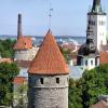 Сколько жизней в Эстонии унесет свиной грипп?