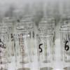 В Литве зафиксировали еще 6 случаев заболевания гриппом A(H1N1)