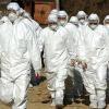 В Португалии из-за свиного гриппа продезинфицировали избирательные участки