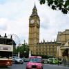 В Британии вегетарианскую рекламу запретили из-за A/H1N1