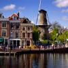 В Нидерландах 78 человек госпитализированы с диагнозом гриппа A/H1N1/