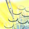 Клинические испытания вакцины против гриппа А/H1N1 в России вышли на финишную стадию