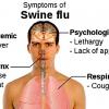 Каковы первые симптомы заражения «свиным гриппом»?