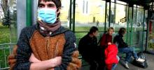 Как передается свиной грипп