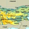 Болгария объявила эпидемию свиного гриппа
