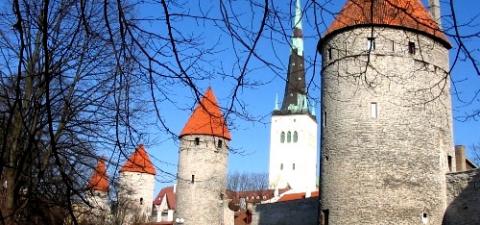 """Правительство Эстонии намерено вакцинировать от """"свиного"""" гриппа все население страны"""