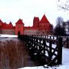 Борьба с гриппом A/H1N1 в Литве