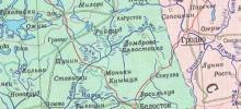 """""""Свиной"""" грипп зарегистрирован и на белорусско-польском пограничье"""