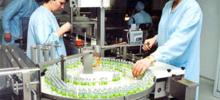 С октября начнется производство вакцины от «свиного гриппа» в России