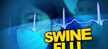 """Медики боятся возникновения гибрида """"свиного"""" и """"птичьего"""" гриппа"""